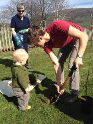 Planting the Community Orchard